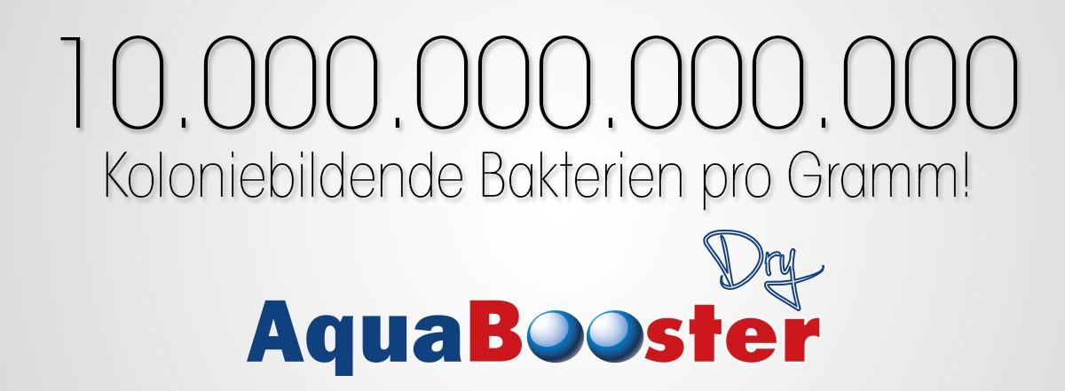 easyAqua AquaBooster Dry - 10.000.000.000.000 Kolonisierende Bakterien pro Gramm